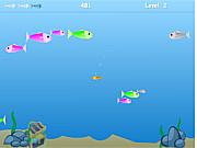 Survivor Fishy Clone game
