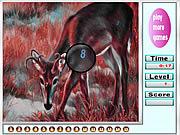 Red deers hidden numbers game