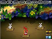 Devil Rabbit Hunt game