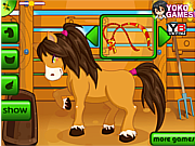 Pony Care game