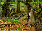Hidden Animals game