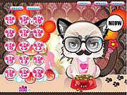 Grumpy Kitty game