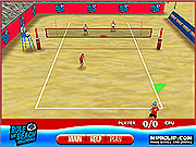 Rule the Beach Volleyball game