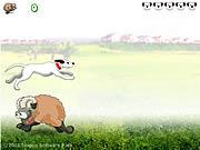 Sheep Jumper game