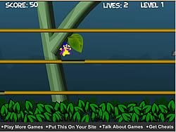 Jungle Escape game