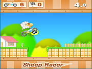 Sheep Racer game